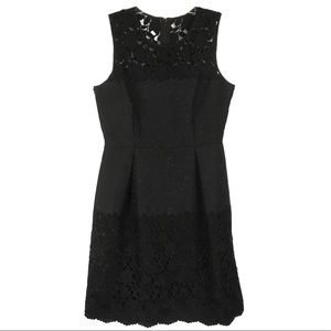 WHBM Black Lace Dress Cocktail Pleated Brocade 10